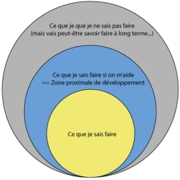 zone_proximale.png